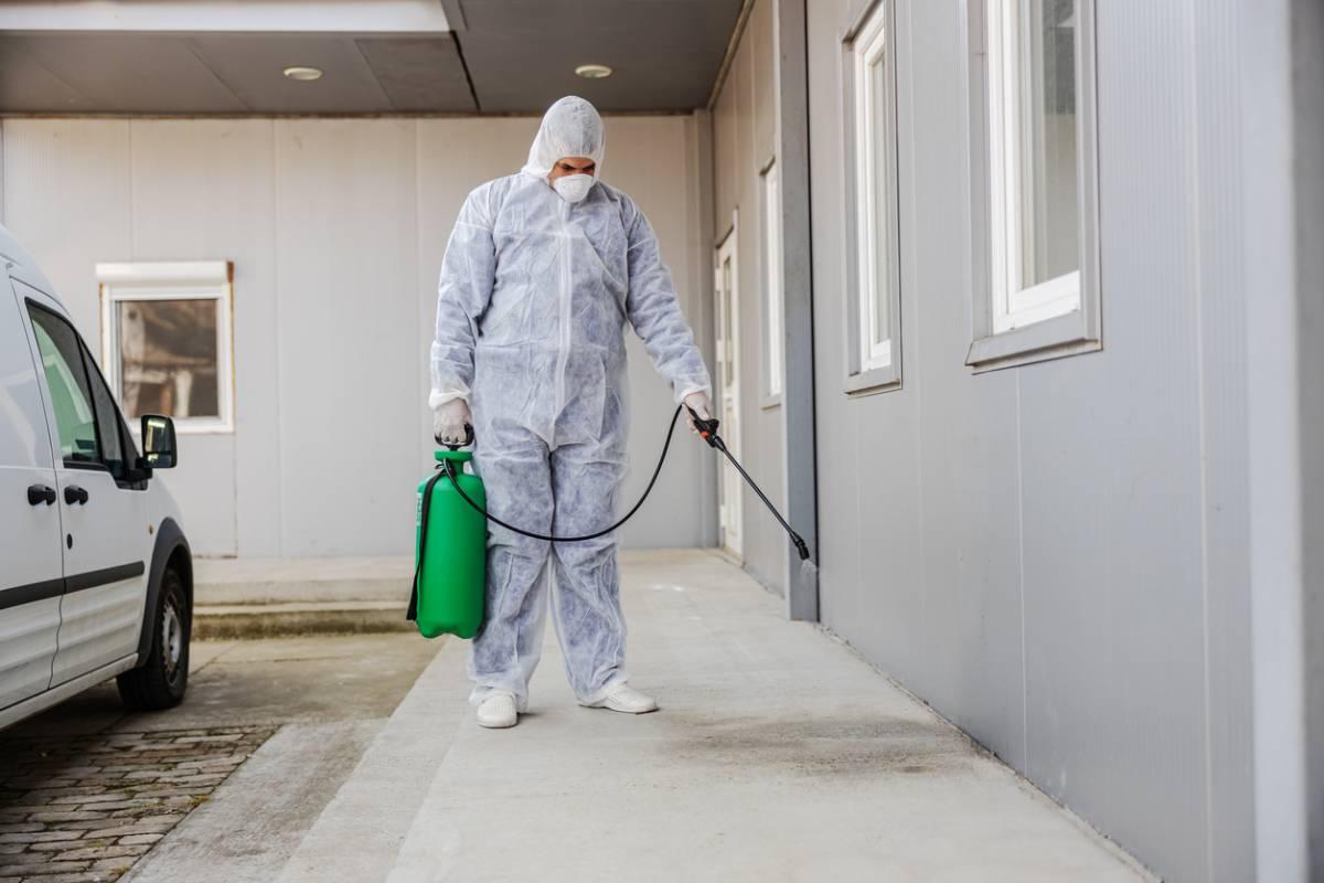 Diagnostic immobilier termites à Toulouse : vendre mieux et rapidement !